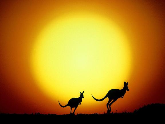 10 lý do bạn nên đăng kí ngay một khóa học tại Úc