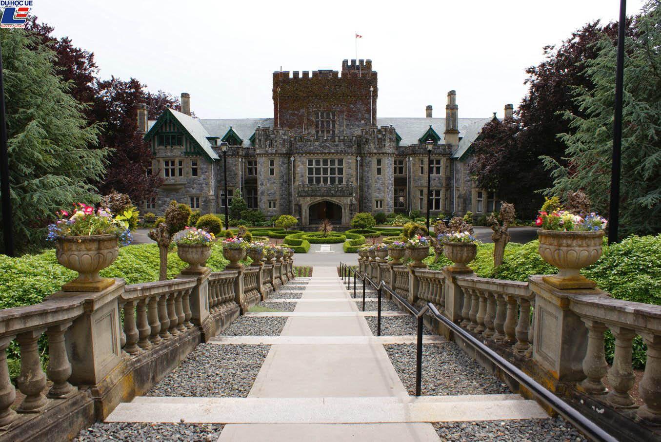 4 trường đại học Canada miễn lệ phí nộp đơn cho sinh viên quốc tế 2