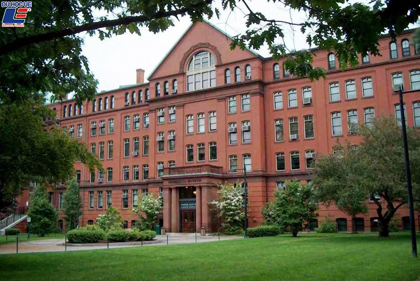 4 Trường Đại học Mỹ đứng đầu thế giới về tỷ lệ sinh viên có việc làm 1