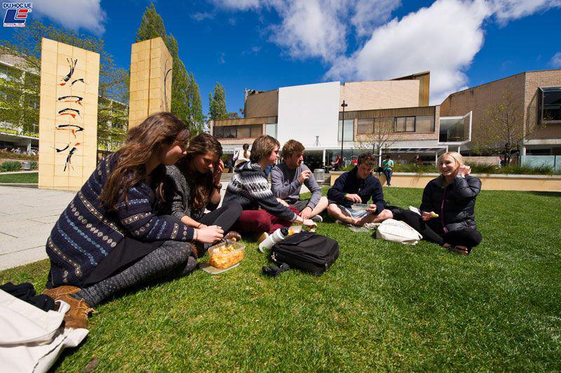 Cập nhật thông tin học bổng khóa dự bị tại Tasmiania International College 2020 3