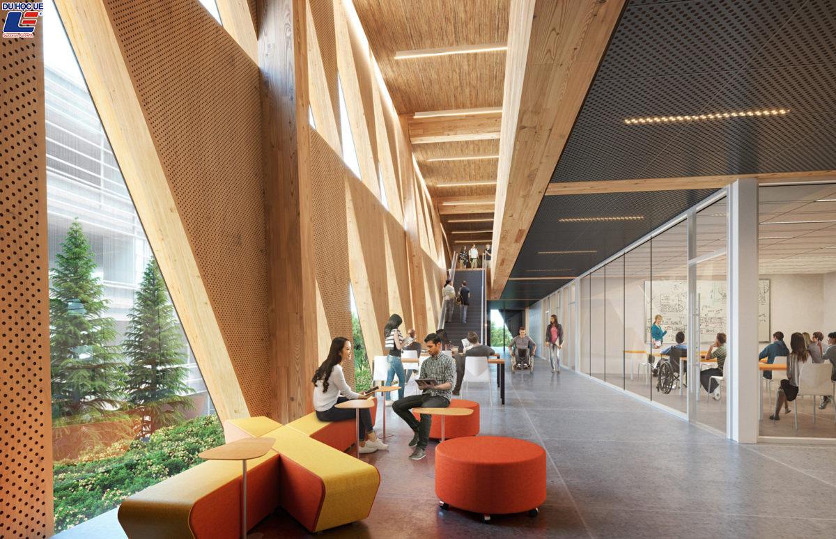 Chương trình dự bị - Đại học York, Canada 3