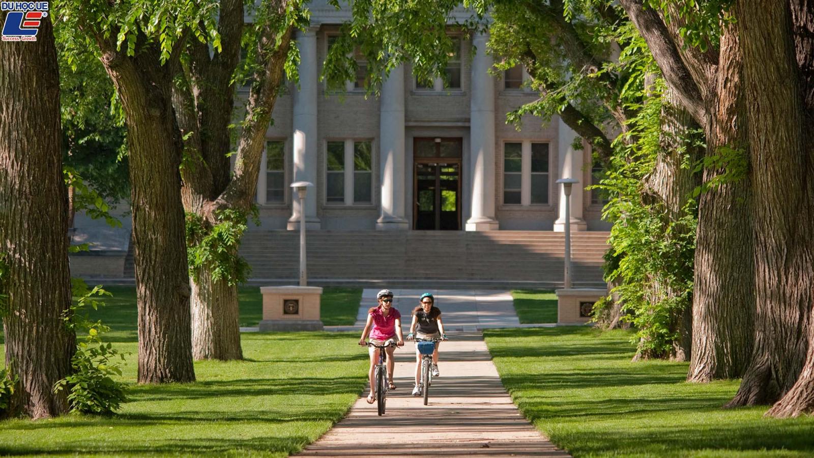 Có GPA ấn tượng? Nhận ngay học bổng nghìn đô tại CSU 4