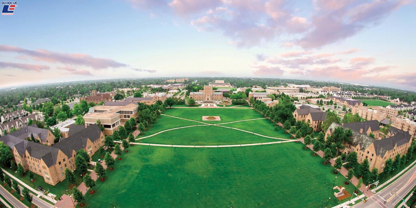 Cơ hội nhận học bổng lên đến 16.000 USD tại Tulsa University 5