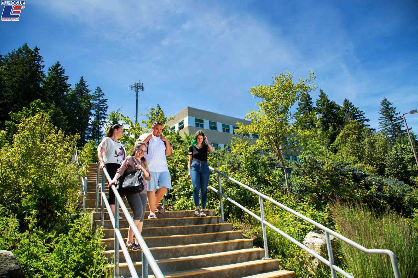 Cùng Du học UE chinh phục các suất học bổng danh giá tại Vancouver Island University, Canada 2