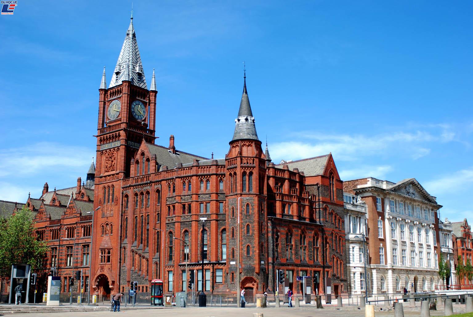 Đại học Liverpool: Bệ phóng sự nghiệp kinh doanh thể thao thành công