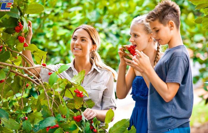 Danh sách học bổng du học chuyên ngành nông nghiệp 2019 2