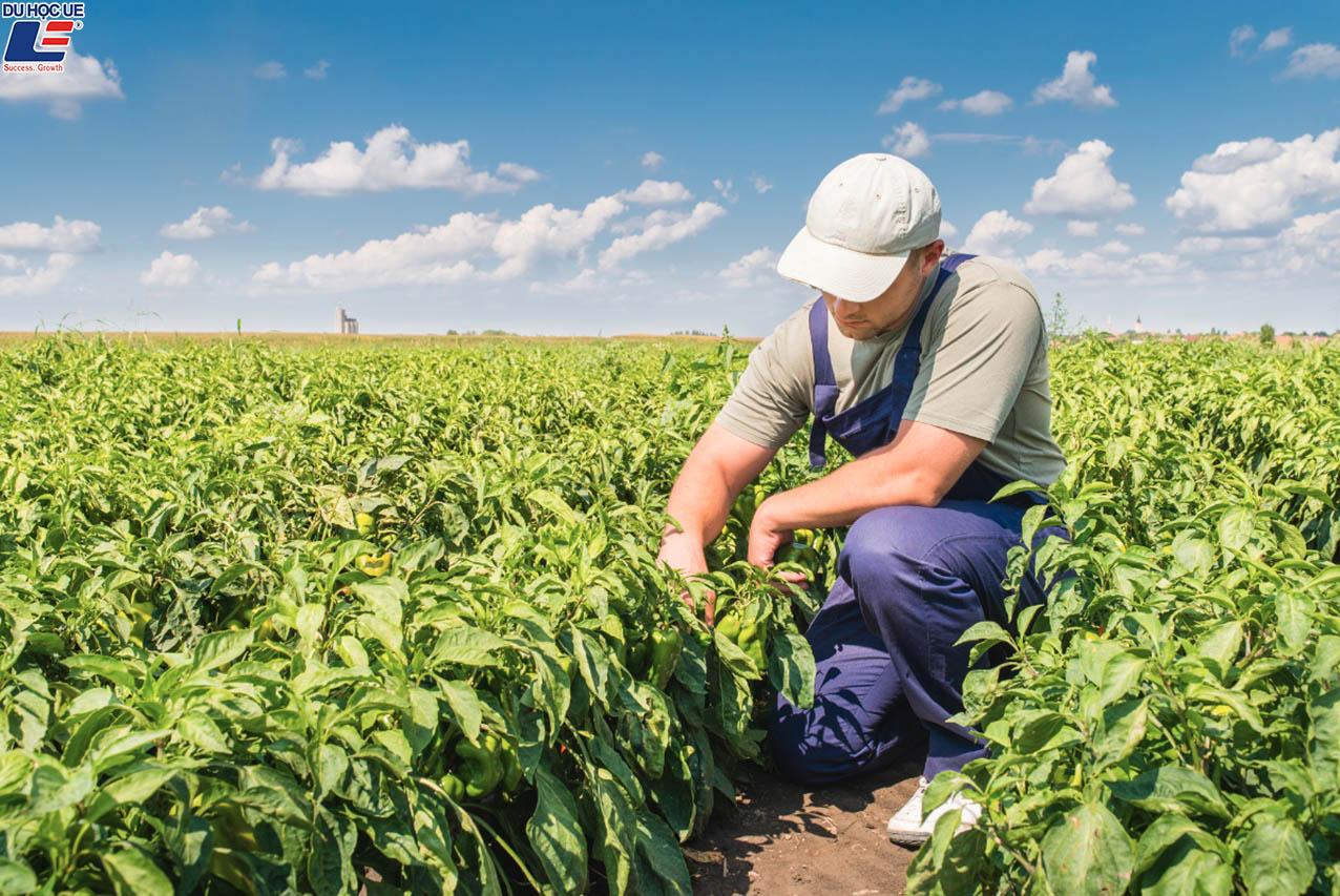 Danh sách học bổng du học chuyên ngành nông nghiệp 2019 3