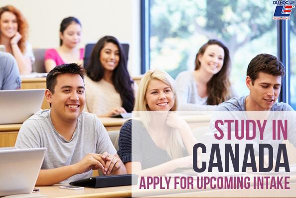 Hệ thống giáo dục bậc đại học Canada 1