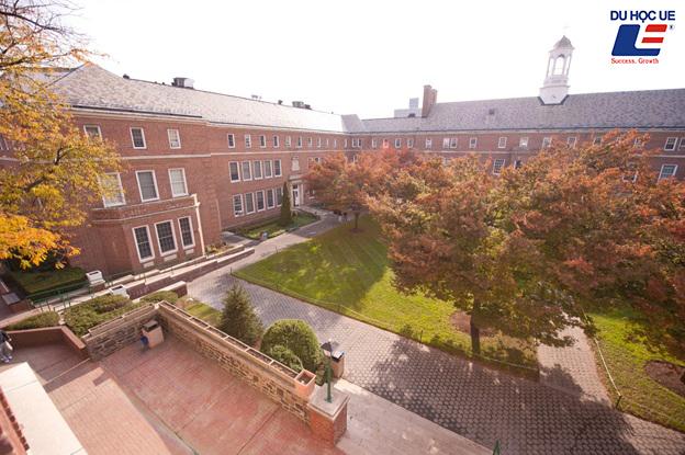 Trường cao đẳng Manhattan, Chương trình học bổng tại Manhanttan, Manhattan College