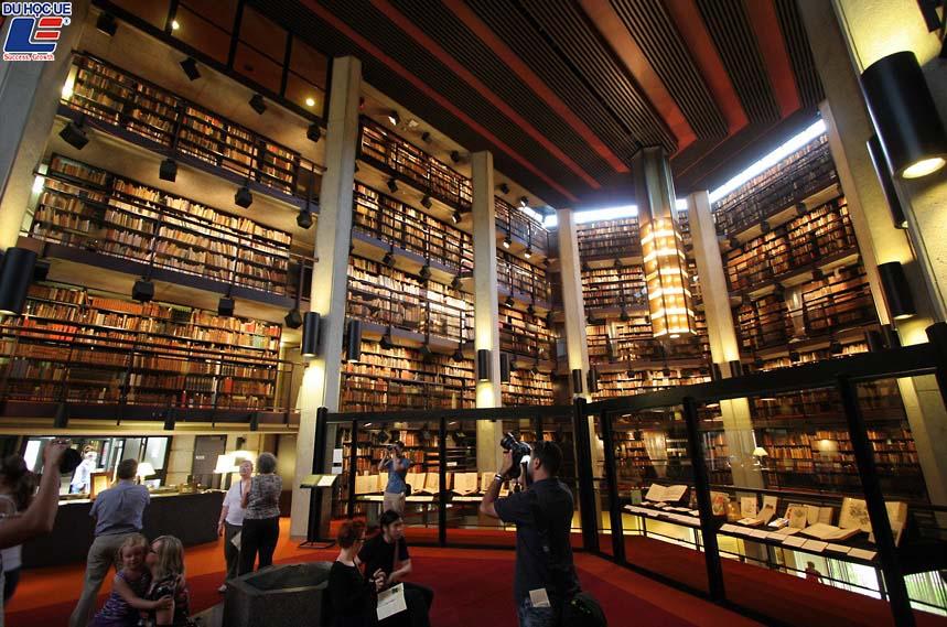 Hướng dẫn nộp hồ sơ online Đại học Toronto 2