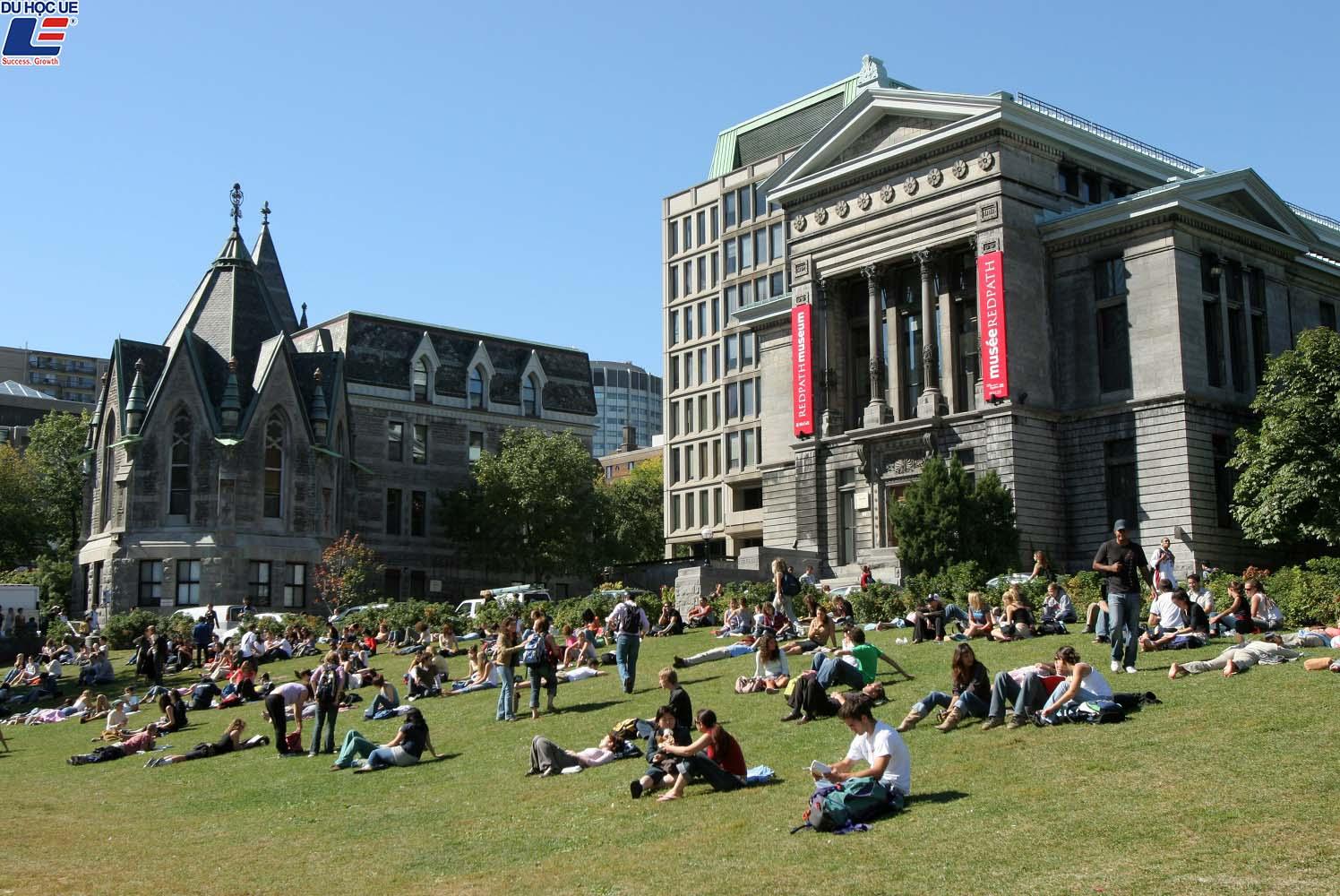 Du học Canada - Trường đại học McGill