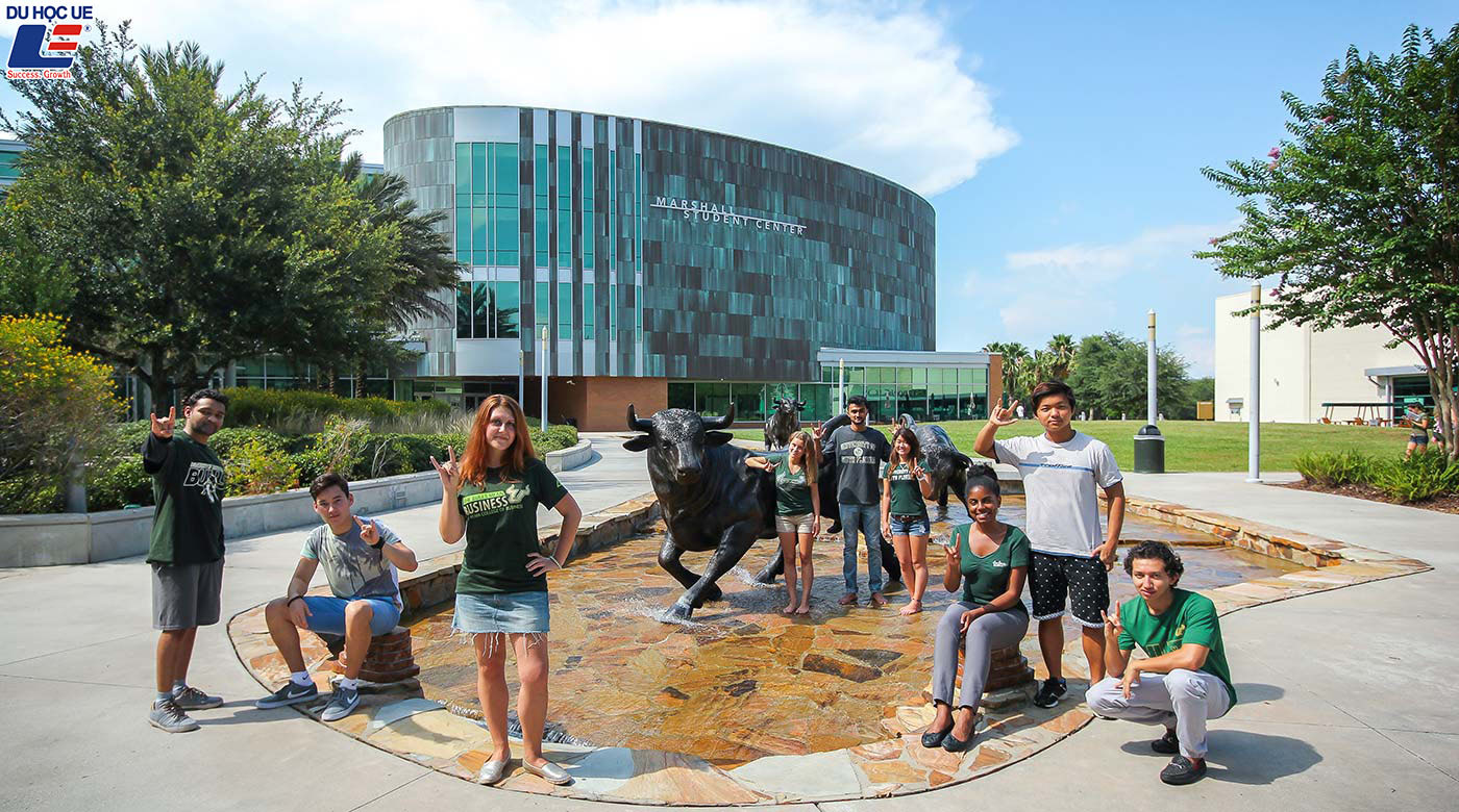 Du học dễ dàng tại Mỹ với học bổng từ University Of South Florida 4