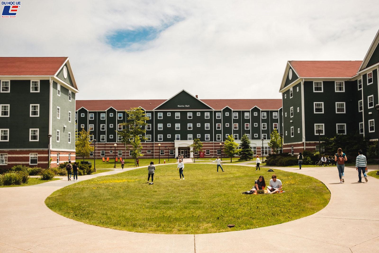 Du học học bổng trường Cape Breton University tại đảo Cape Breton bình yên, Canada 3