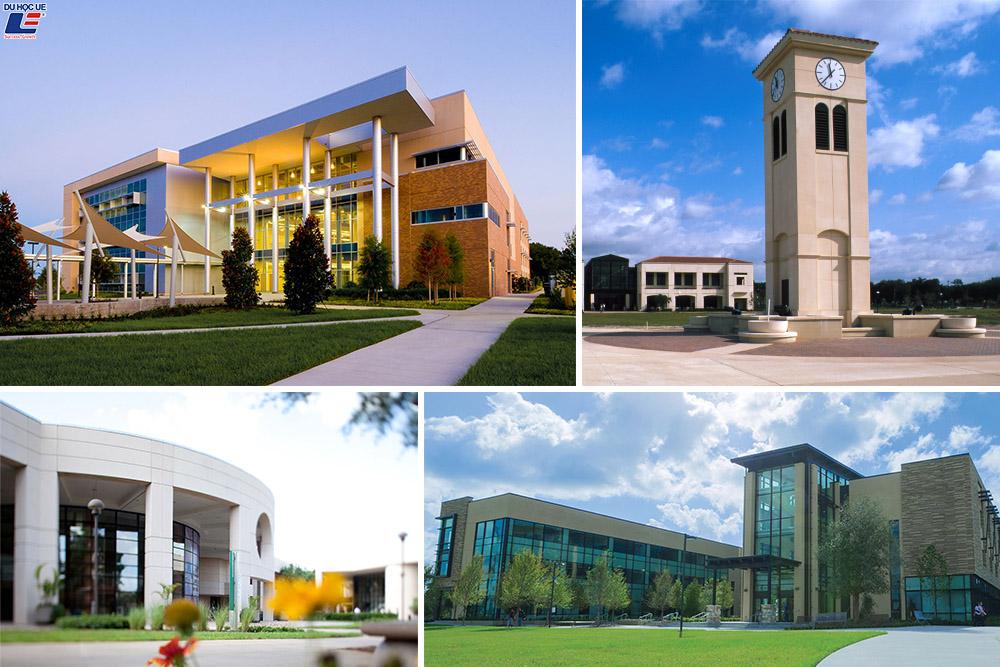 Du học Mỹ siêu tiết kiệm cùng Valencia College - Cơ hội chuyển tiếp đảm bảo vào Đại học Central Florida cũng như các trường Đại học tại Florida, Mỹ 2