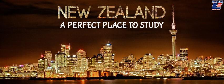 Chọn ngành nào khi du học New Zealand 1