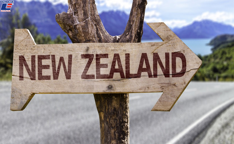 Hệ thống giáo dục New Zealand 3