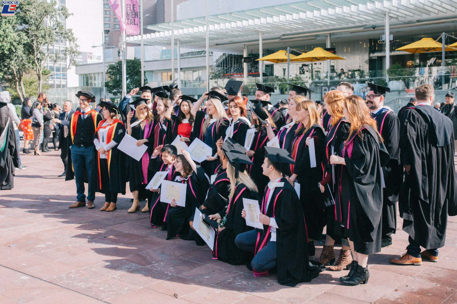 Du học New Zealand - Tổng quan về giáo dục New Zealand 4