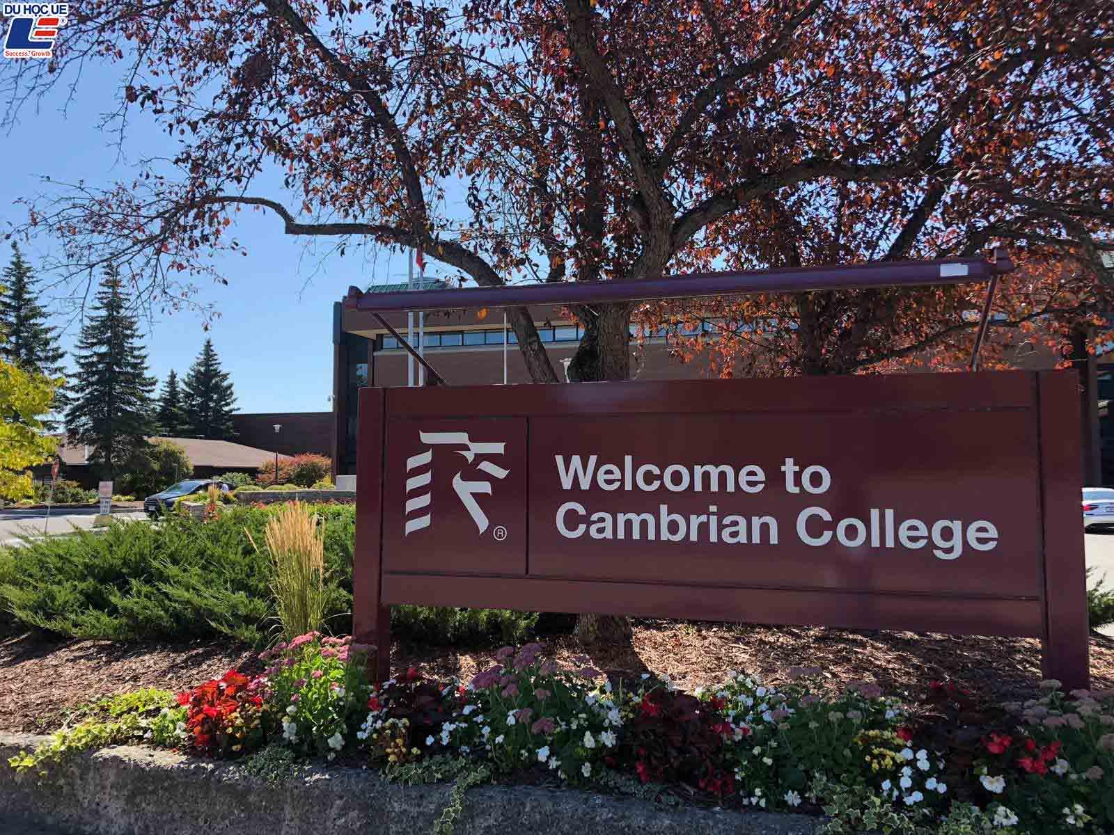 Hàng loạt học bổng chào đón sinh viên quốc tế vào năm học mới tại Cambrian College, Canada 2