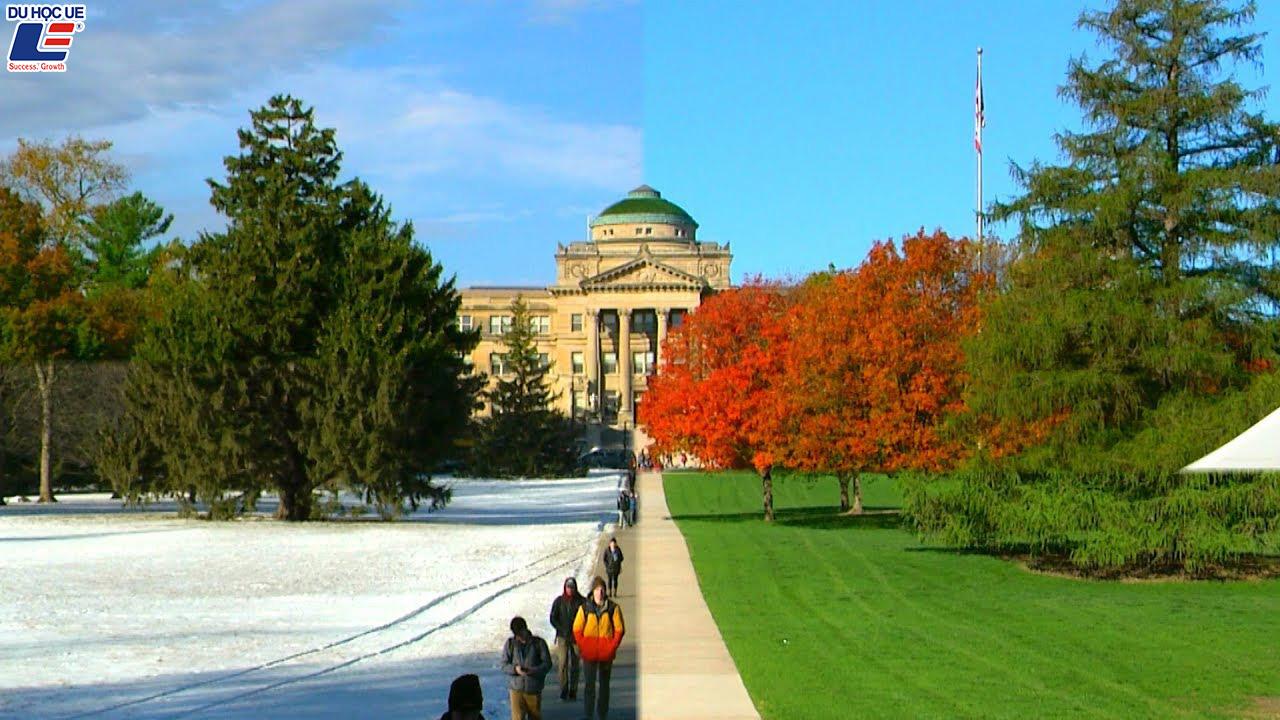 Học bổng $40.000 từ trường đại học nghiên cứu hàng đầu - Iowa State University 4