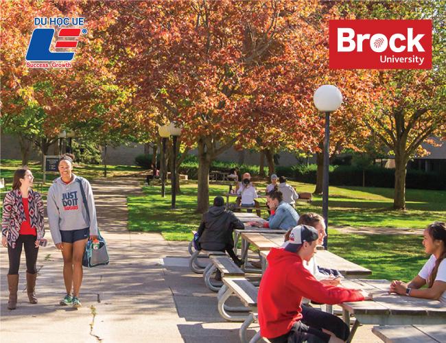 Học bổng từ trường Đại học Brock 2