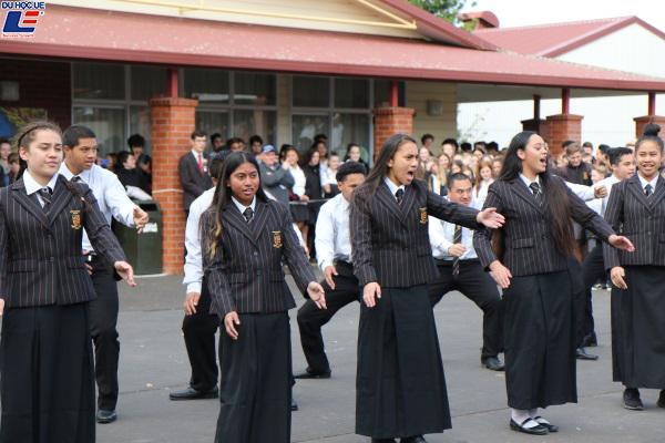 Học bổng hấp dẫn của chính phủ New Zealand dành cho chương trình trung học phổ thông vào trường Pukekohe High School 2