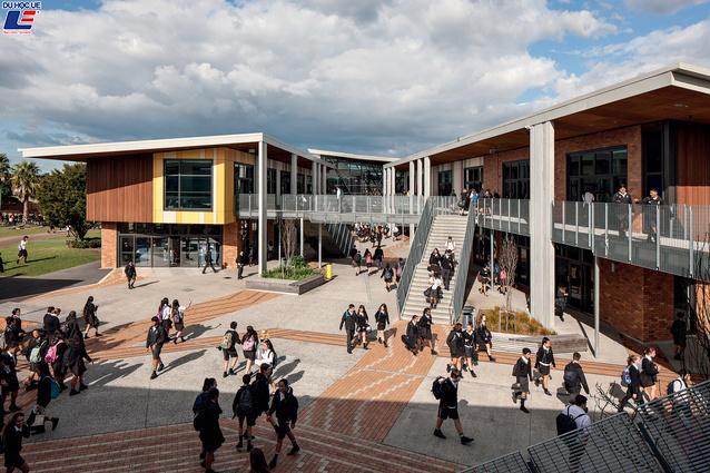 Học bổng hấp dẫn của chính phủ New Zealand dành cho chương trình trung học phổ thông vào trường Avondale College 4