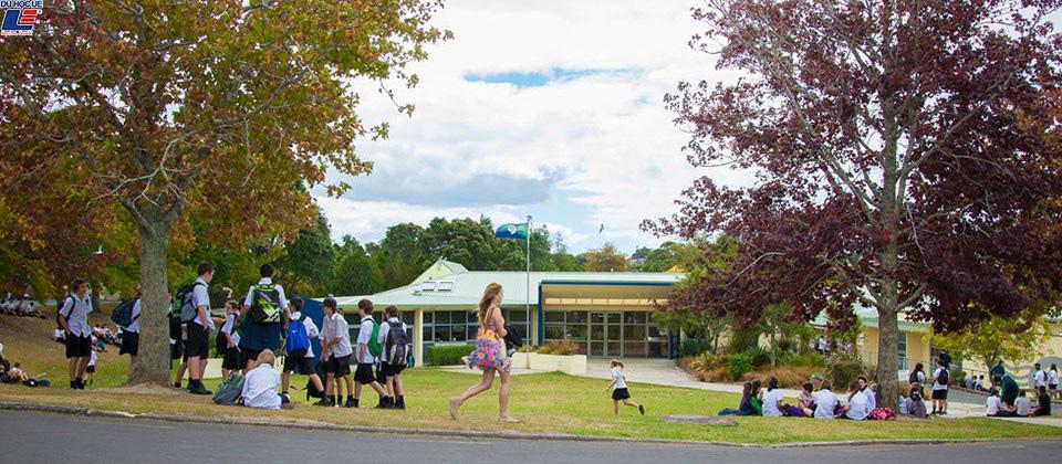 Học bổng hấp dẫn của chính phủ New Zealand dành cho chương trình trung học phổ thông vào trường Green Bay High School