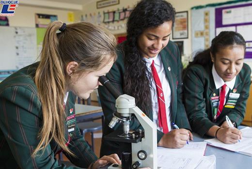 Học bổng hấp dẫn của chính phủ New Zealand dành cho chương trình trung học phổ thông vào trường Onehunga High School 2