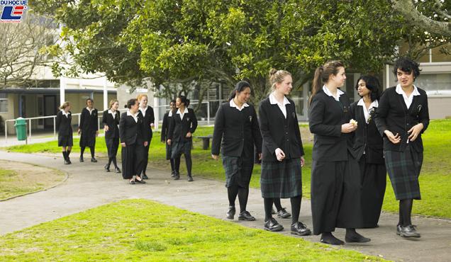 Học bổng hấp dẫn của chính phủ New Zealand dành cho chương trình trung học phổ thông vào trường ST Dominic's College 2