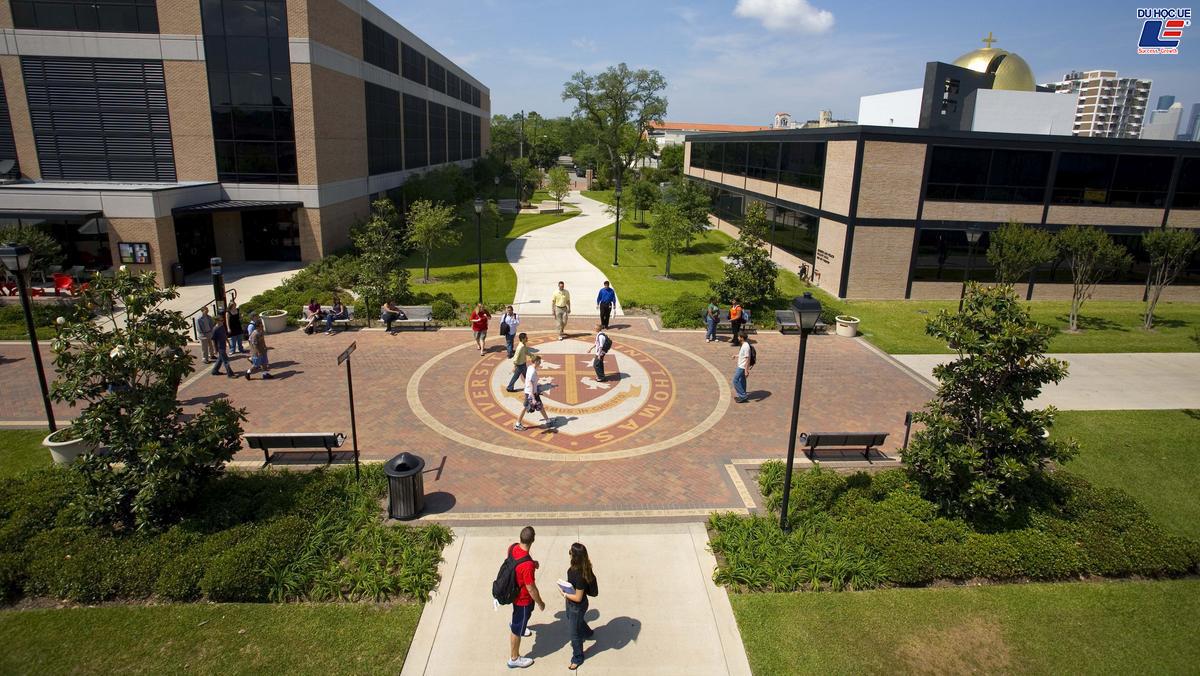 Học bổng lên tới 70% khi ứng tuyển vào University Of St. Thomas 2