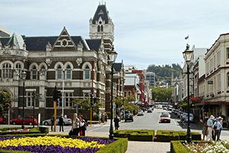 Khám phá những biệt danh khó quên tại thành phố Dunedin - New Zealand