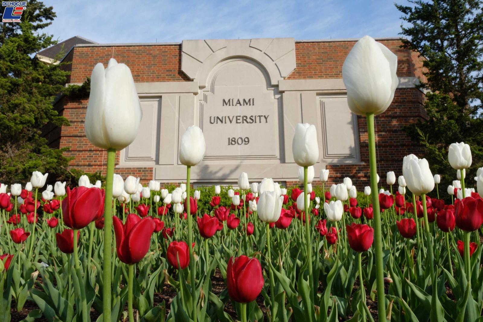 Miami University - Cơ hội học bổng bán phần đến toàn phần 2