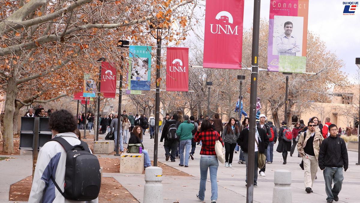Nhanh tay săn học bổng giá trị 15.000 đô-la tại University Of New Mexico 2