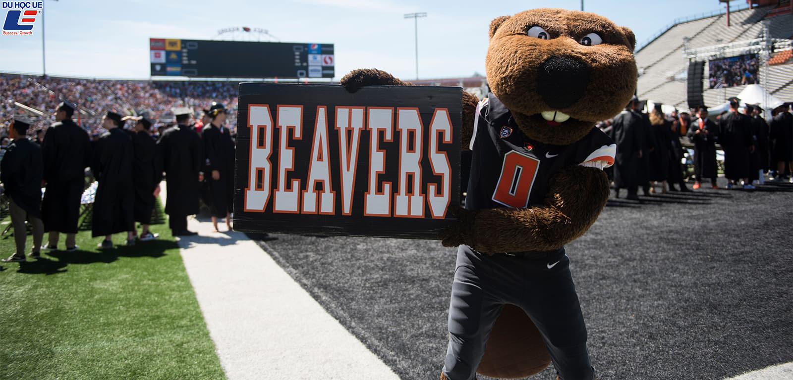 Oregon State University - Vì sao đây nên là lựa chọn du học của bạn?
