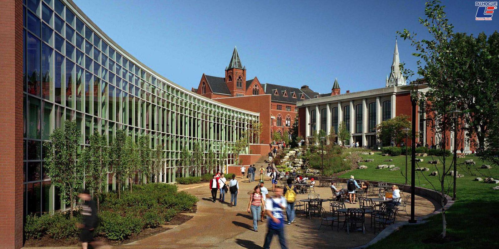 Saint Louis University - Điểm đến tiềm năng của hành trình chinh phục giấc mơ Mỹ 3