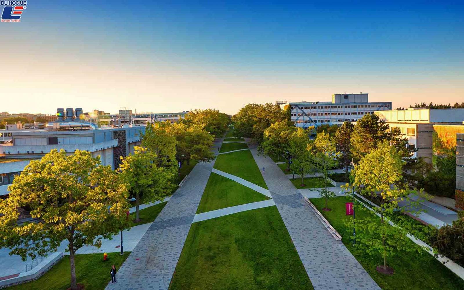 Học bổng du học Canada 3