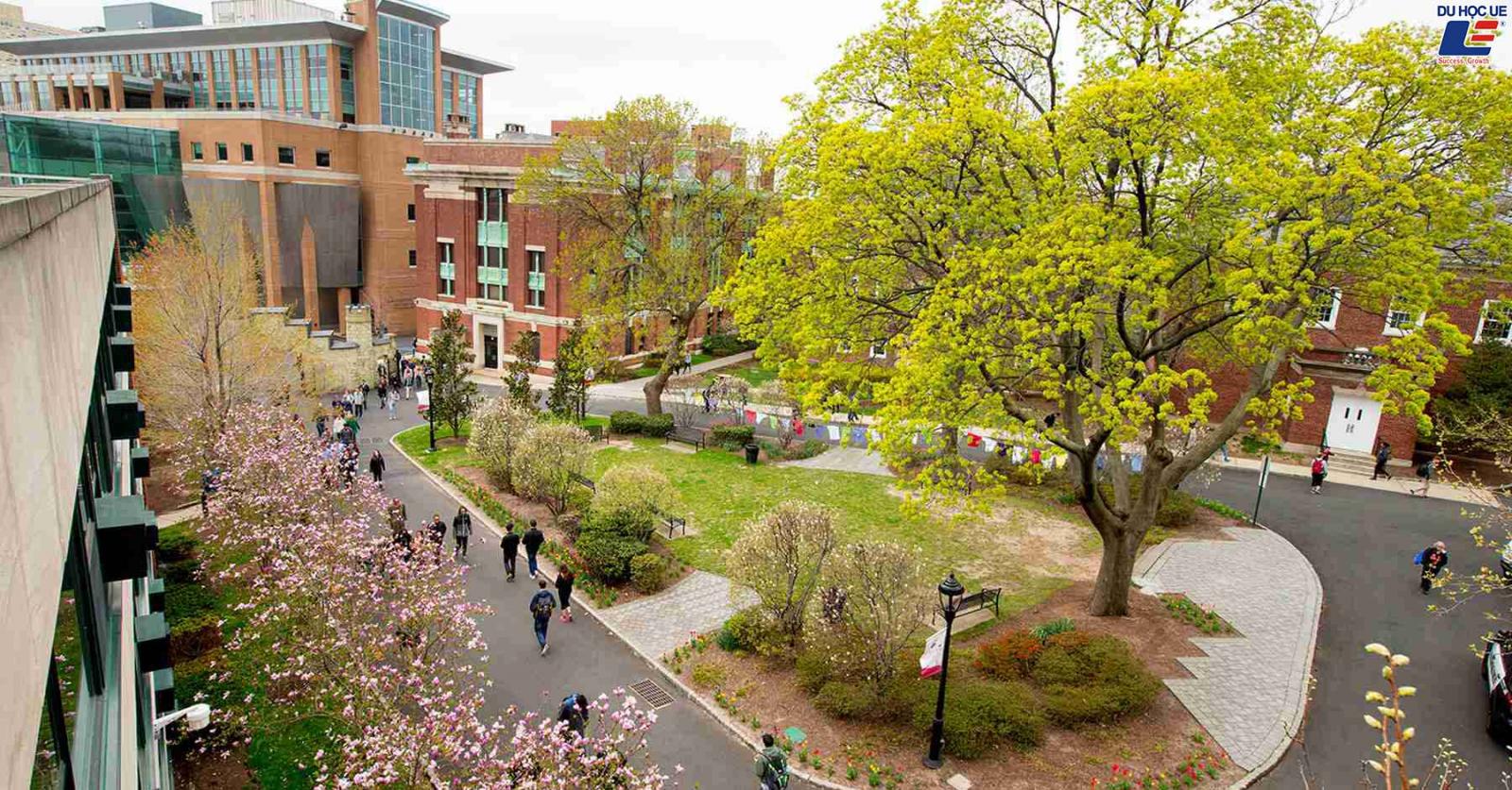 Thực hiện ước mơ du học với suất học bổng lên đến 100% học phí tại Stevens Institute Of Technology 2