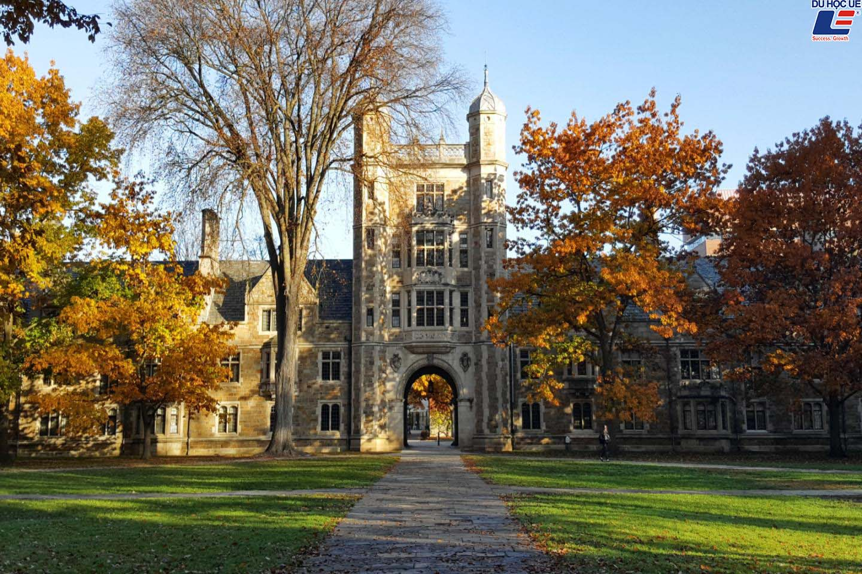 Top 5 trường đại học công lập tốt nhất Hoa Kỳ 2019 2