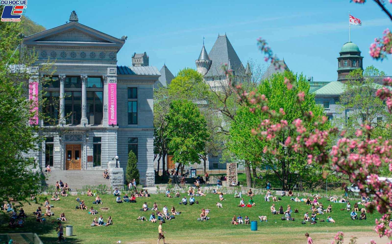 Top 5 trường Đại học danh giá nhất Canada 2