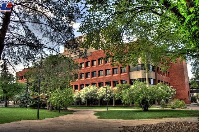 Top 5 trường Đại học danh giá nhất Canada 4