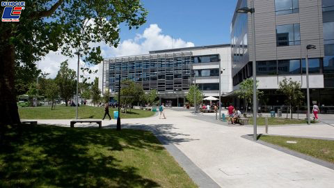 University of Auckland, Đại học Auckland 3
