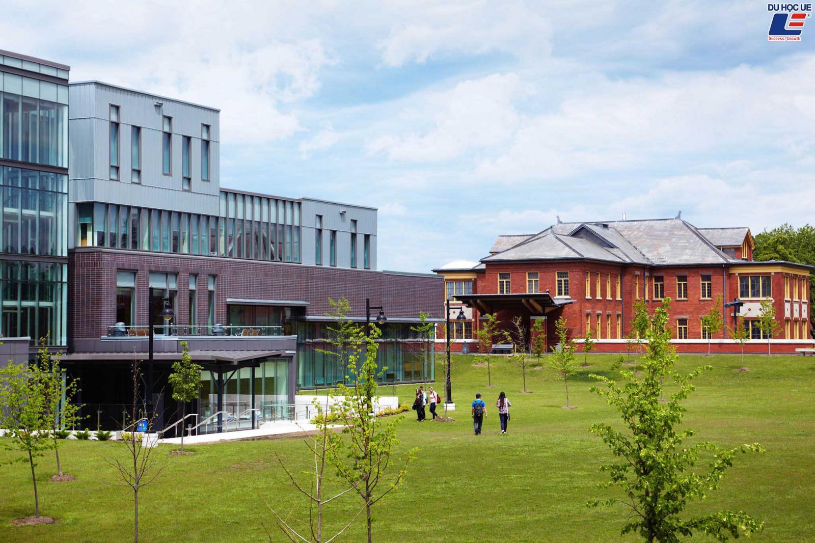 Vô vàn các suất học bổng hấp dẫn và phần thưởng dành cho sinh viên đăng ký tuyển sinh vào Humber College năm học 2020 - 2021 4