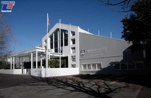 Whitecliffe College of Arts and Design 1