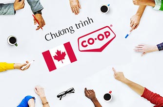 Những điều cần biết về chương trình thực tập Internship và Co-op tại Canada